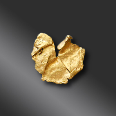 Gold Nugget GN1194